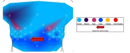 Infrarood regulatie thermografie maakt de temperatuurverschillen zichtbaar