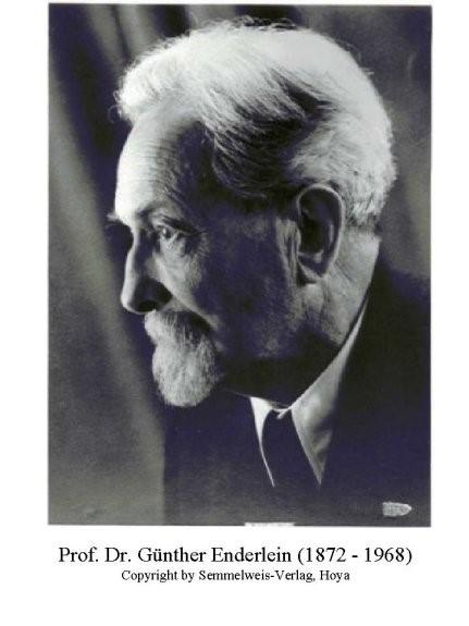 Isopathie is mede vorm gegeven door dr. Enderleinn, de duitse zooloog en microbioloog