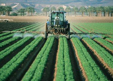 pesticides doden insecten en fulvinezuur producerende micro organismen