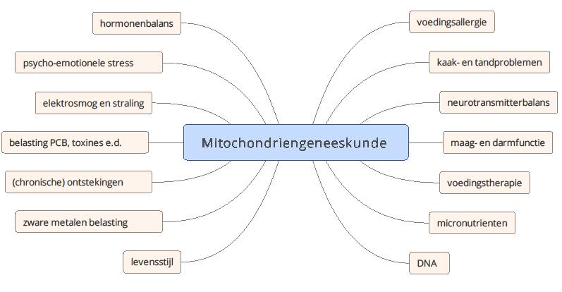 vele factoren bepalen de mitochondrienfunctie